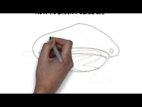 480x360 How To Draw Police Cap