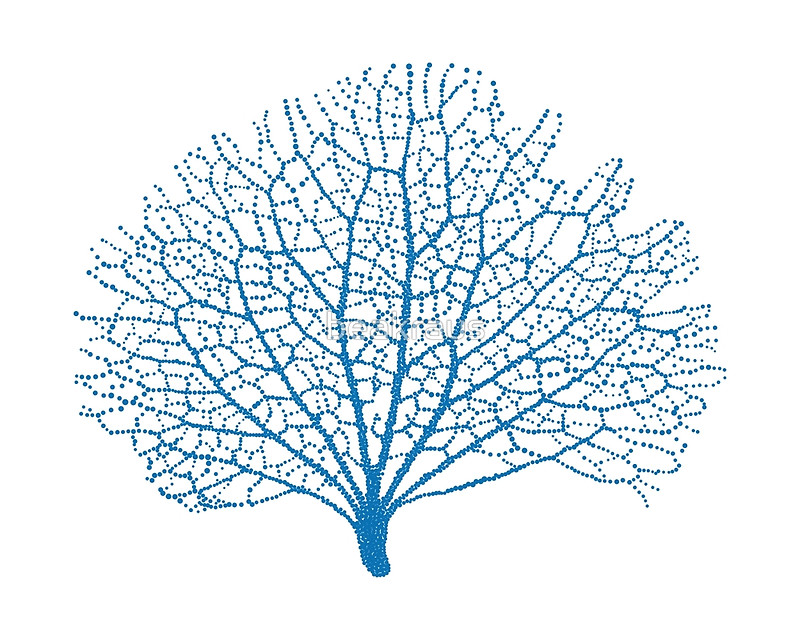 800x640 Blue Sea Fan Coral Silhouette Greeting Cards By Beakraus Redbubble