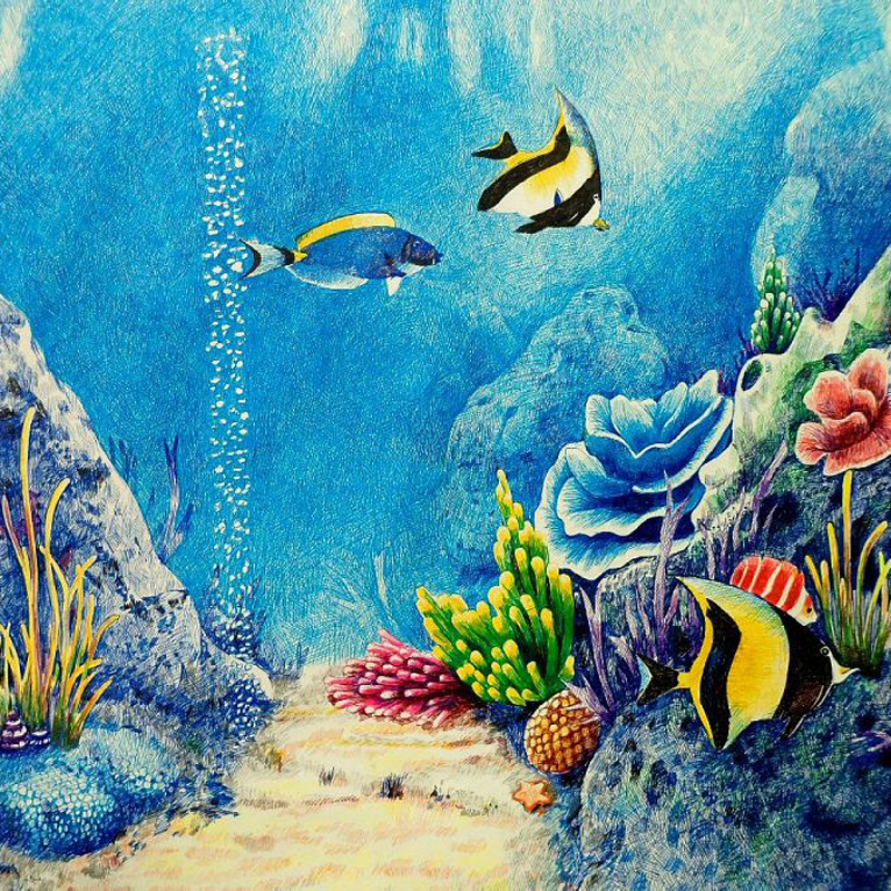 Coral Reef Drawing With Color at GetDrawings.com | Free for personal ...