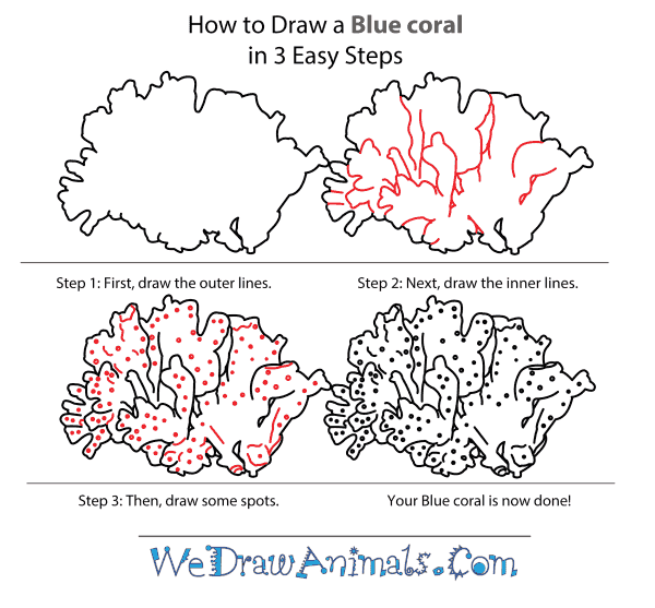 Easy Coral Reef Drawing