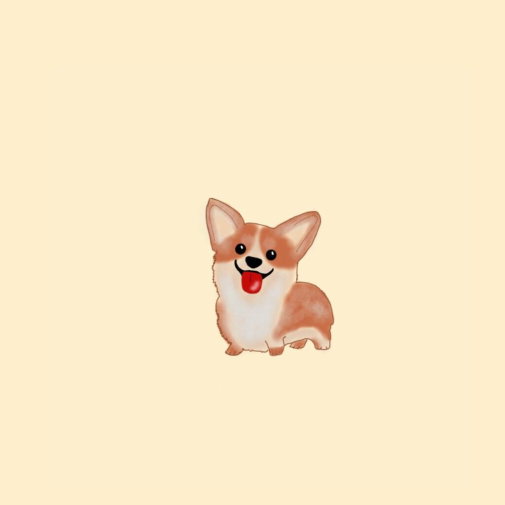 1024x1024 Freetoedit Dog Corgi Drawing Mydrawing