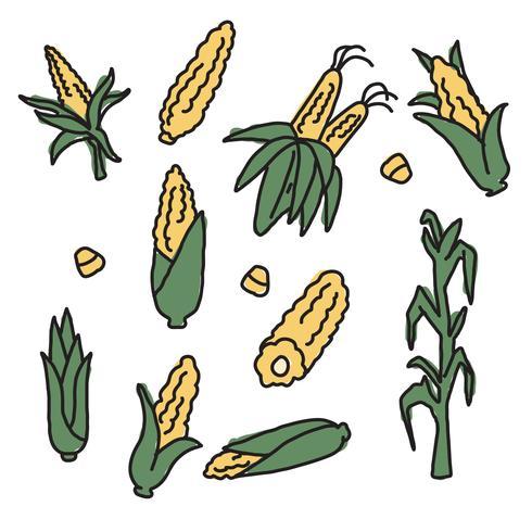 490x490 Corn Drawings