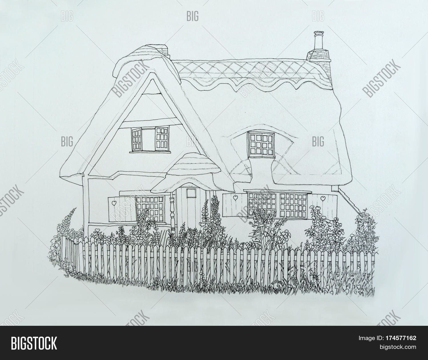 1500x1263 Ink Line Drawing English Thatched Image Amp Photo Bigstock