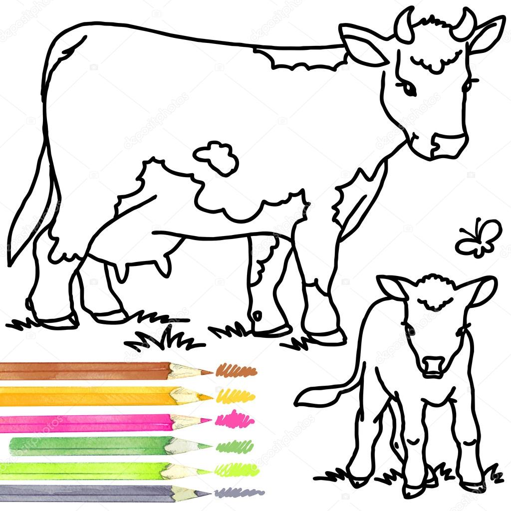 1024x1024 Cow And Calf. Coloring Book Cow And Calf. Cow Outline Drawing. Cow