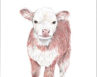 340x270 Calf Drawingcow Drawingnursery Artart For Babycolored