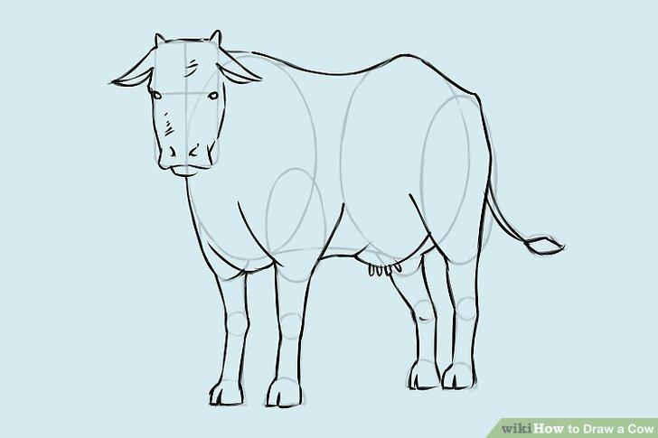 728x485 4 Ways To Draw A Cow