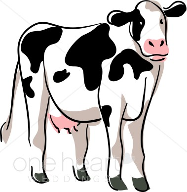 379x388 Stylized Cow Drawing Country Wedding Clipart