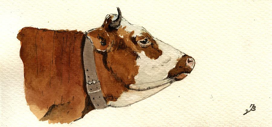 900x422 Cow Head Study Drawing Painting By Juan Bosco