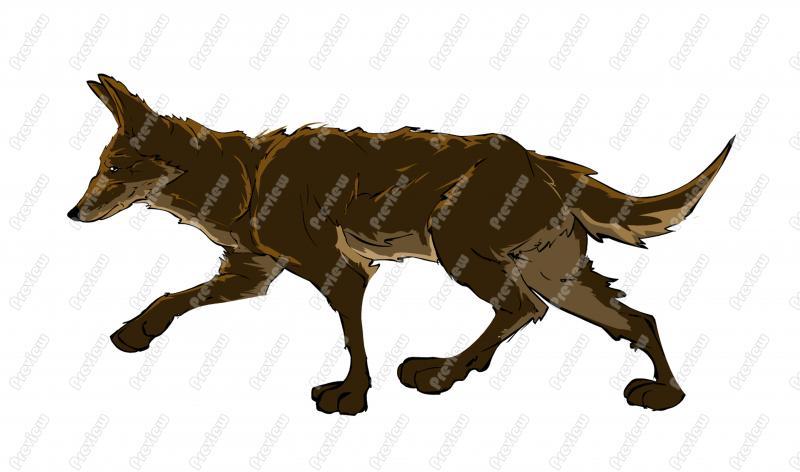 800x472 Coyote Character Clip Art