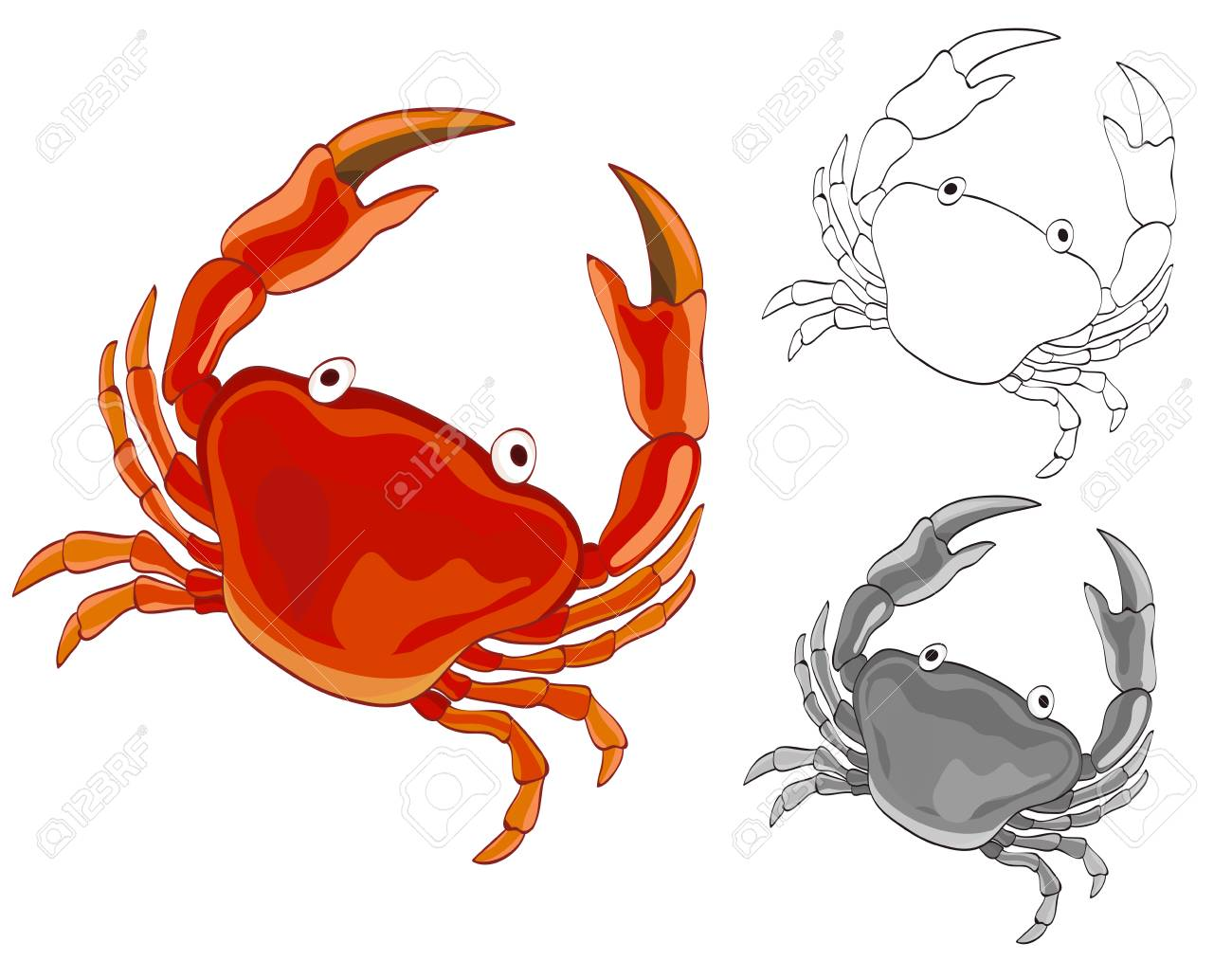 1300x1033 Crab Drawing With Grayscale And Coloring Page Versions. Vector