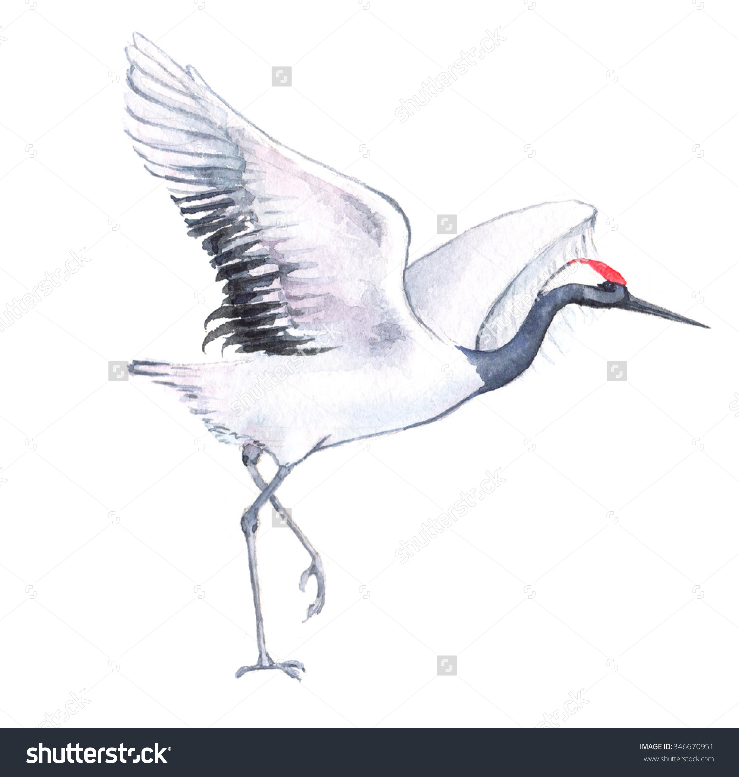 1500x1578 Image Result For Drawing Of Crane Bird Crane Paintings