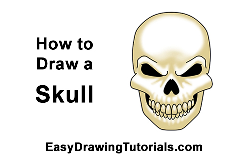 500x315 How To Draw A Skull For Halloween