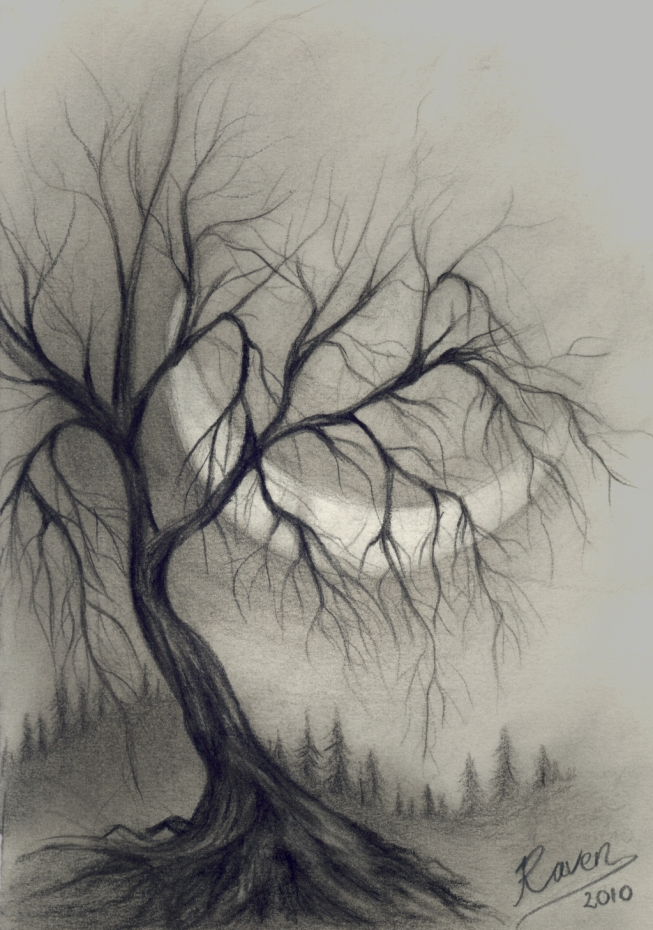 653x930 Tree In Charcoal