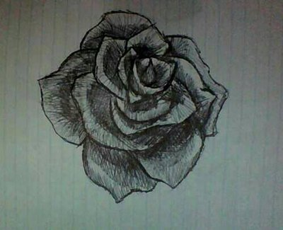400x325 Cross Hatching Rose By Alowlypeasantturtle