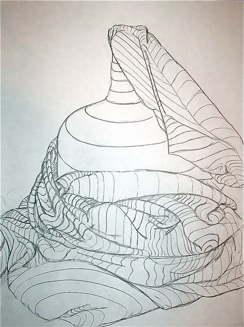 478x640 82 Best Drawings Cross Contour Line Images