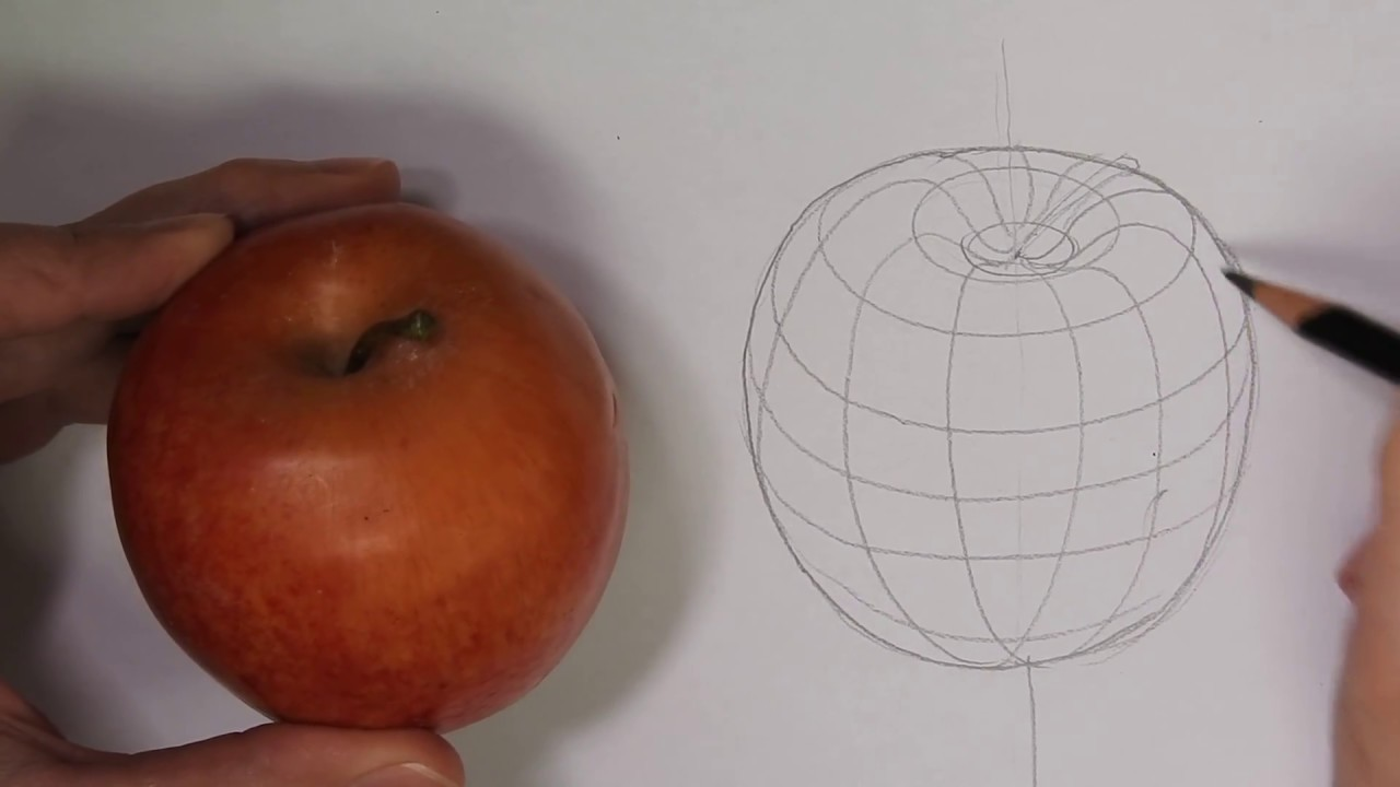 1280x720 Drawing An Apple With Cross Contour Lines