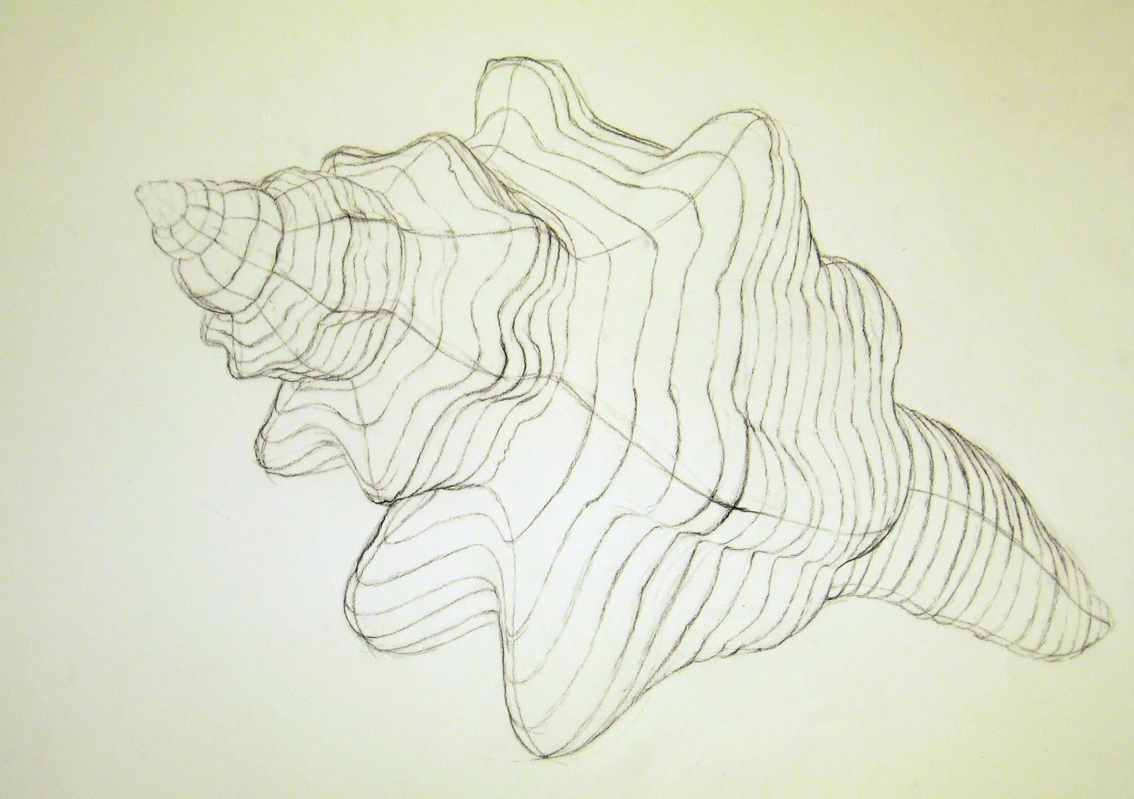 Contour Line Drawing In Art : Cross contour drawing apple at getdrawings free for personal