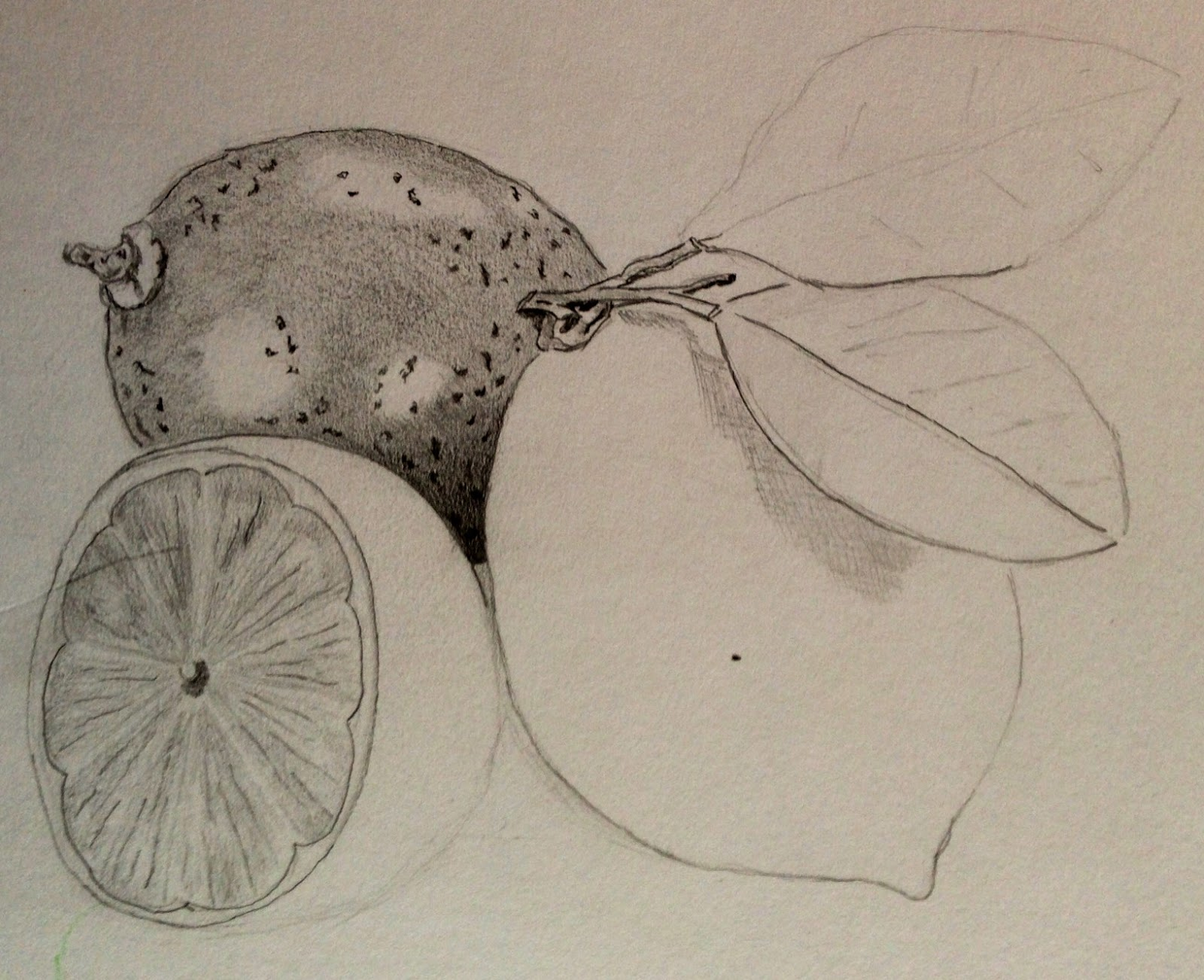 1600x1302 Drawing Fruit And Vegetables In Colour Ocadrawing1jfm