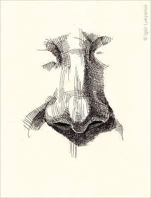 305x400 Realistic Human Nose Drawing (Cross Hatching Style) Noses