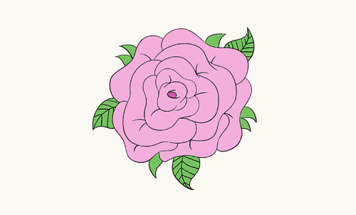 500x302 How To Draw Roses