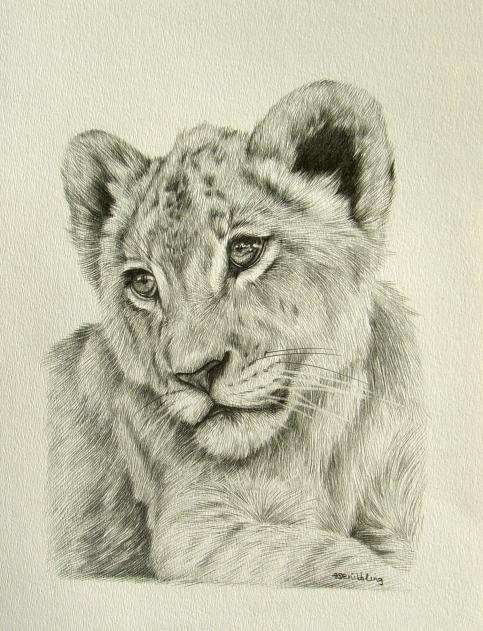 483x631 Lion Cub 12x9 Artsy Fartsy Lion Cub, Lions