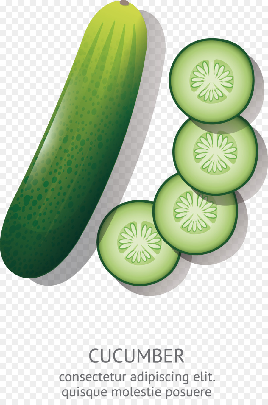 Cucumber Drawing at GetDrawings.com | Free for personal use Cucumber ... for Drawing Cucumber  56mzq