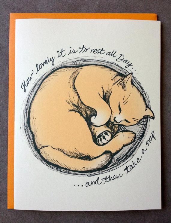 570x742 Curled Up Kitty ~ Ren Sen Design Cats Kitten, Cat