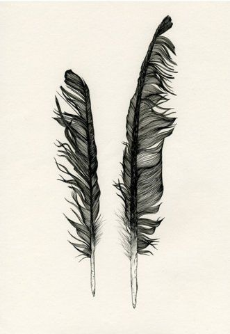 331x480 90 Best Feather Tattoo Ideas Images On Feather Drawing