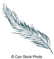 180x195 Curved Feather Stock Illustration Images. 2,992 Curved Feather