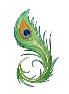 222x300 Peacock Feather Graphic Cute Imagery