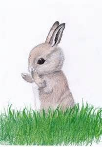 209x300 baby rabbit art