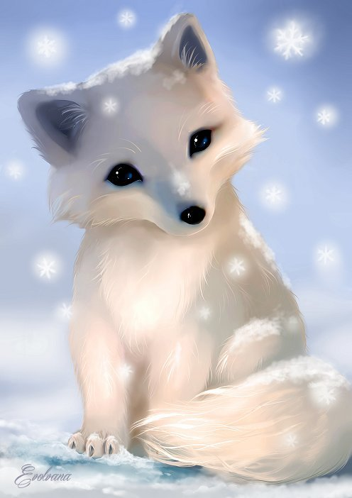 496x702 Chibi Arctic Fox By Evolvana