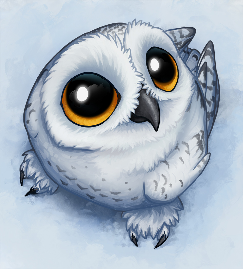 How To Draw A Kawaii Owl