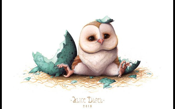 Cute Baby Owl Drawing At Getdrawings Com Free For Personal Use
