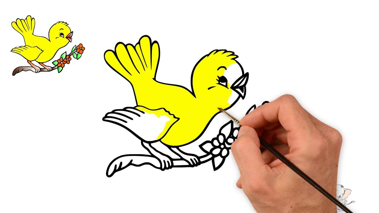 1280x720 How To Draw Cute Bird Learn Drawing Bird Drawing Bird Step By