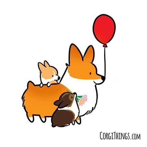480x480 Pin By Melanie On Corgi Love Corgi, Corgis And Dog