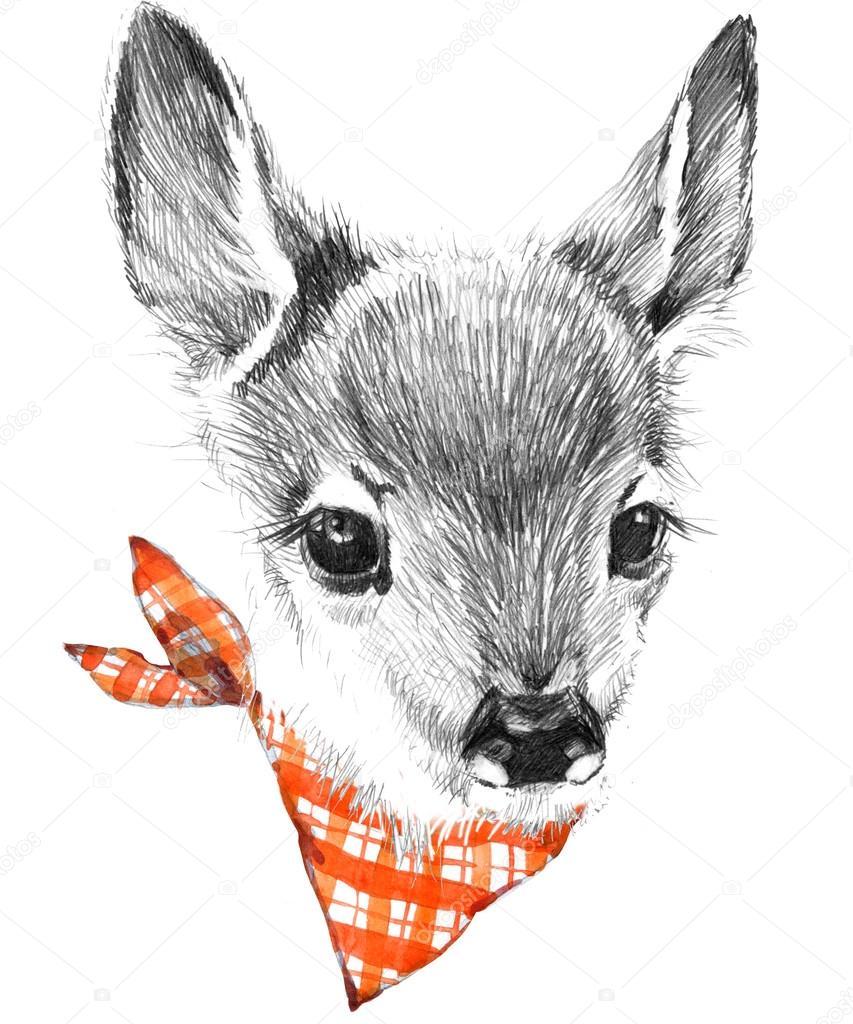 853x1024 Cute deer. pencil sketch of fawn. Animal illustration. T shirt