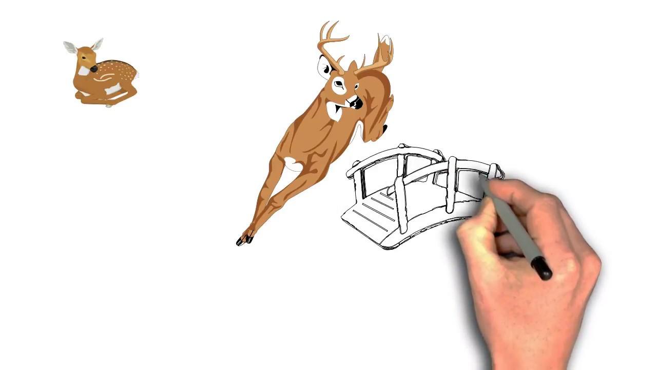 1280x720 ♡ Plengdut tv ™ Drawing Deer Jumping Of Bride With Cute Deer
