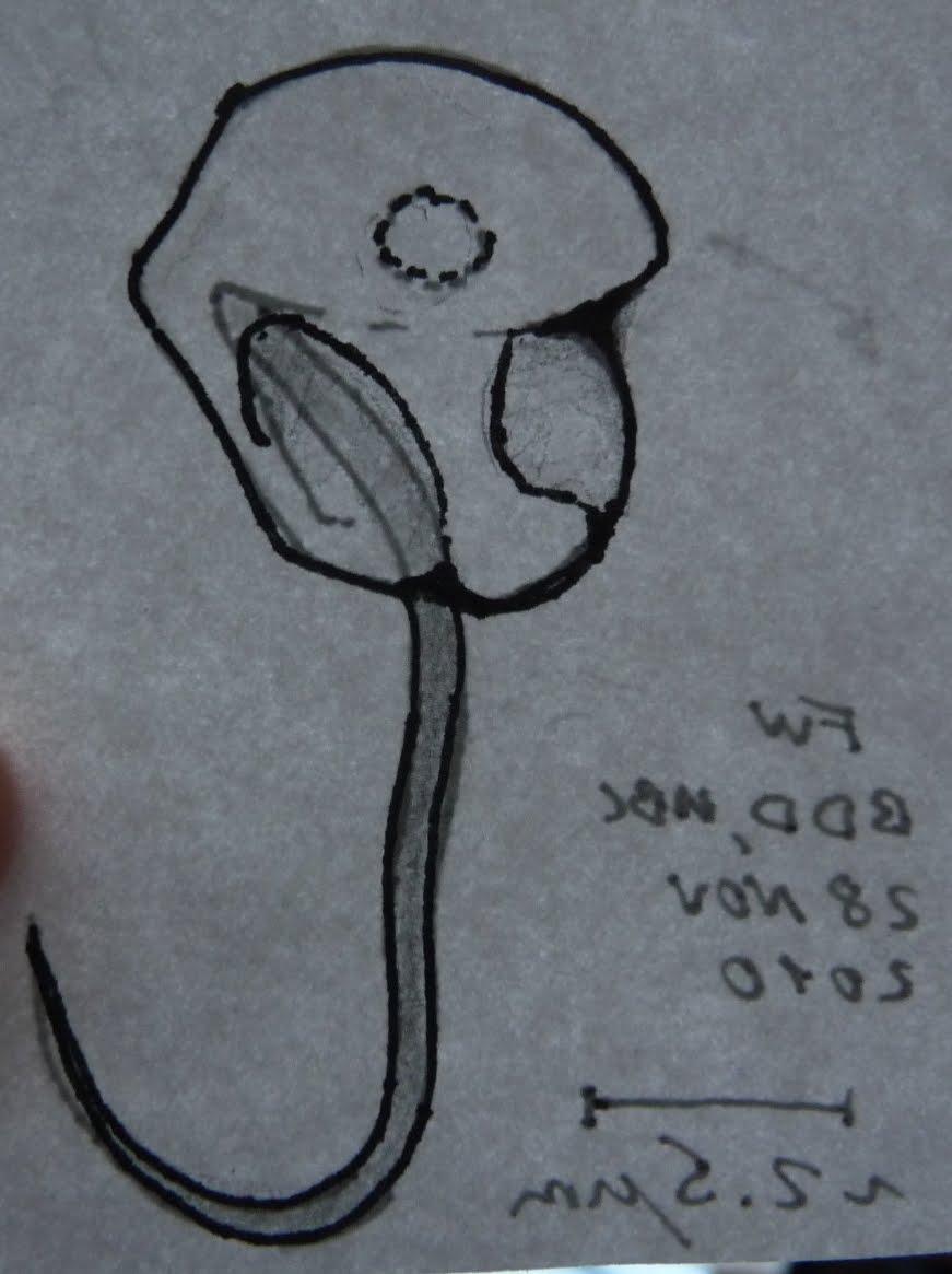 871x1165 Things To Draw Your Boyfriend Tumblr Birthday Ideas