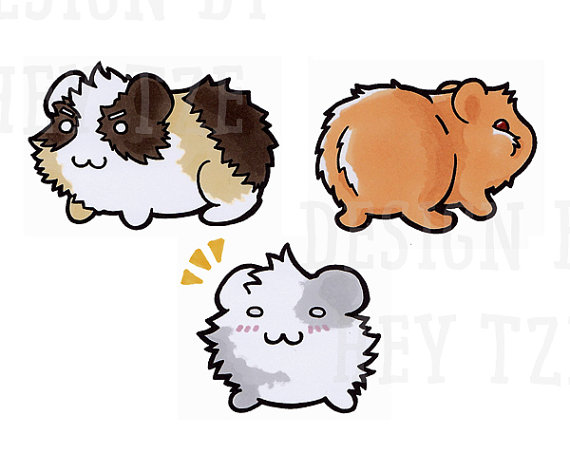 570x453 Cute Guinea Pig Digital Stamp Set, License Included (Guinea Pig