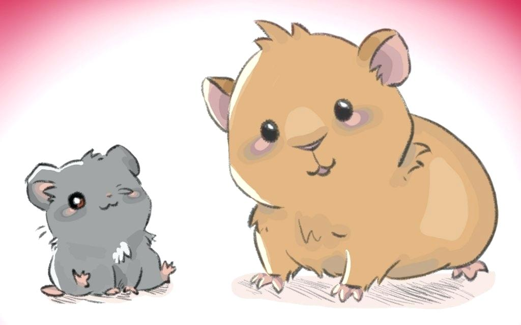 1024x640 Guinea Pig Drawings Hamster And Guinea Pig Friends By Guinea Pig