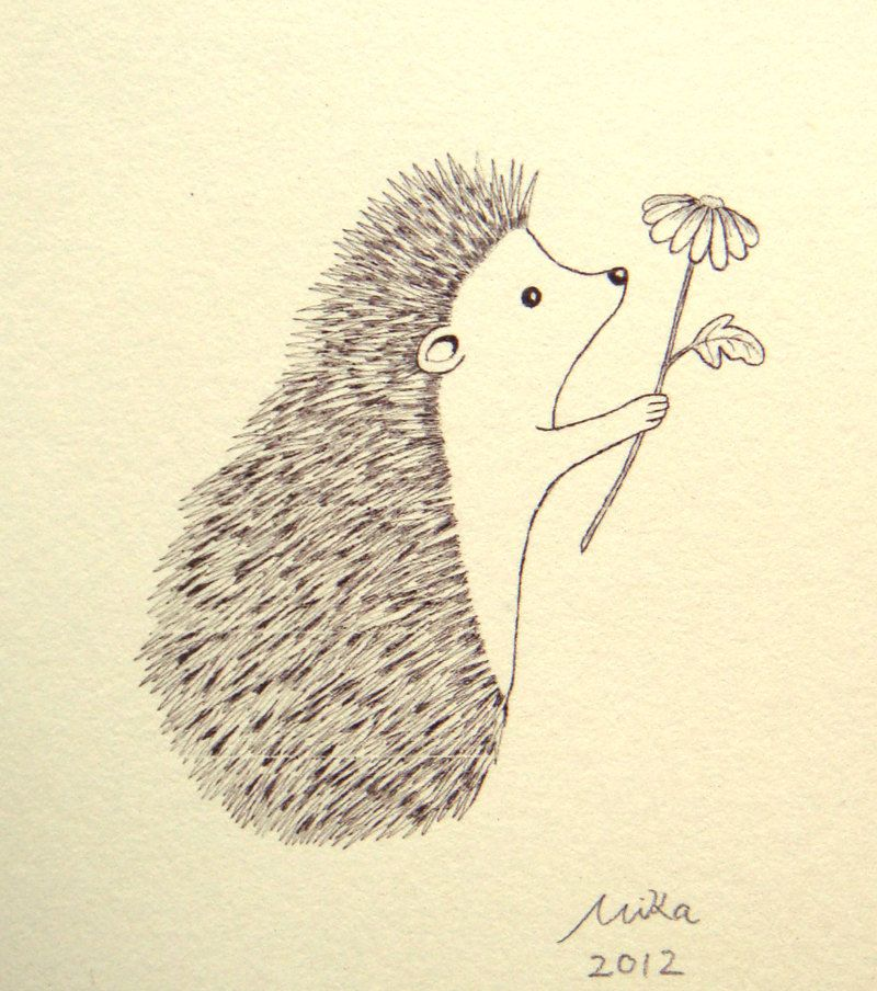 800x904 Hedgehog Illustration Print Ink Drawing Print Black Amp White Wall