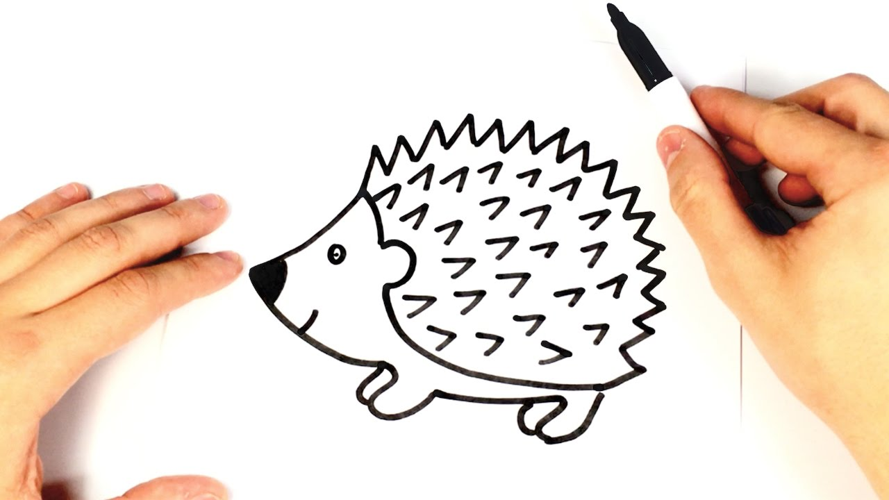 1280x720 How To Draw A Hedgehog For Kids Hedgehog Drawing Lesson