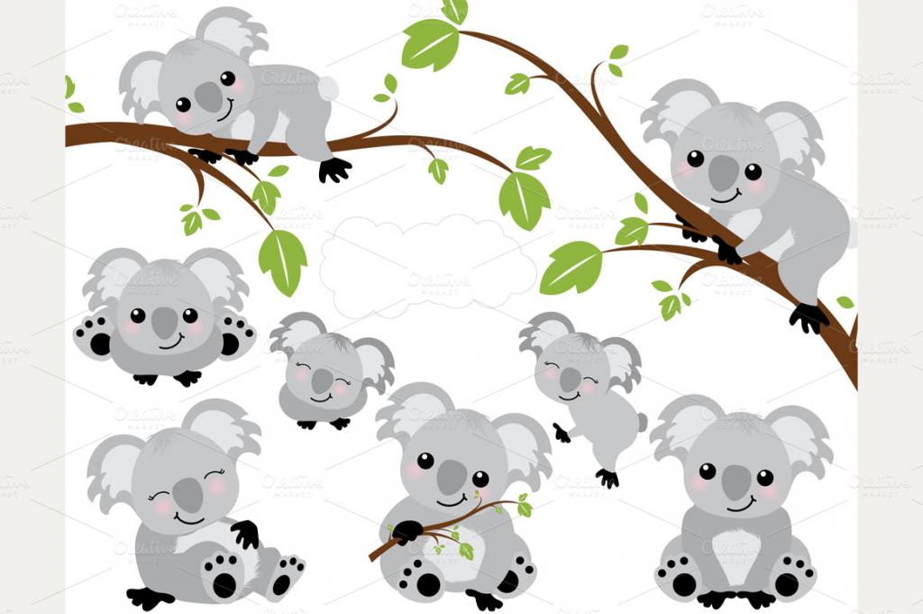 Cute Koala Drawing at GetDrawings   Free download