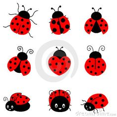 236x236 Cartoon Ladybug Cute Colorful Ladybugs Illustration Isolated