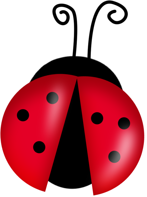 579x777 Cute Ladybugs Clipart