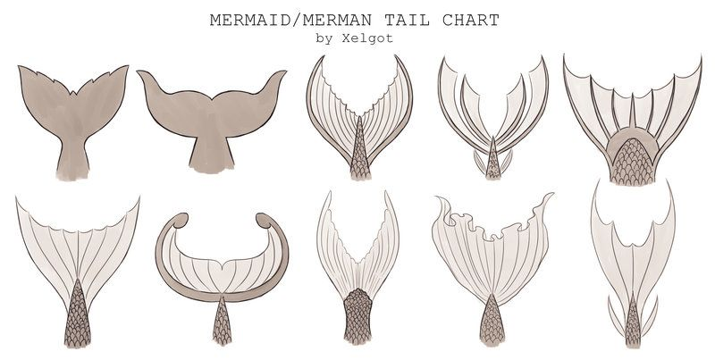 800x403 Mermaidmerman Tail Chart By Xelgot This Chart Was Commissioned