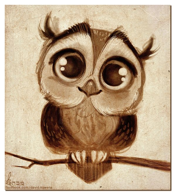 Cute Owl Drawing At Getdrawings Com Free For Personal Use