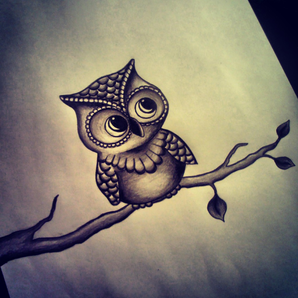 1024x1024 Image Result For Cute Owl Drawing Owls!!! Owl