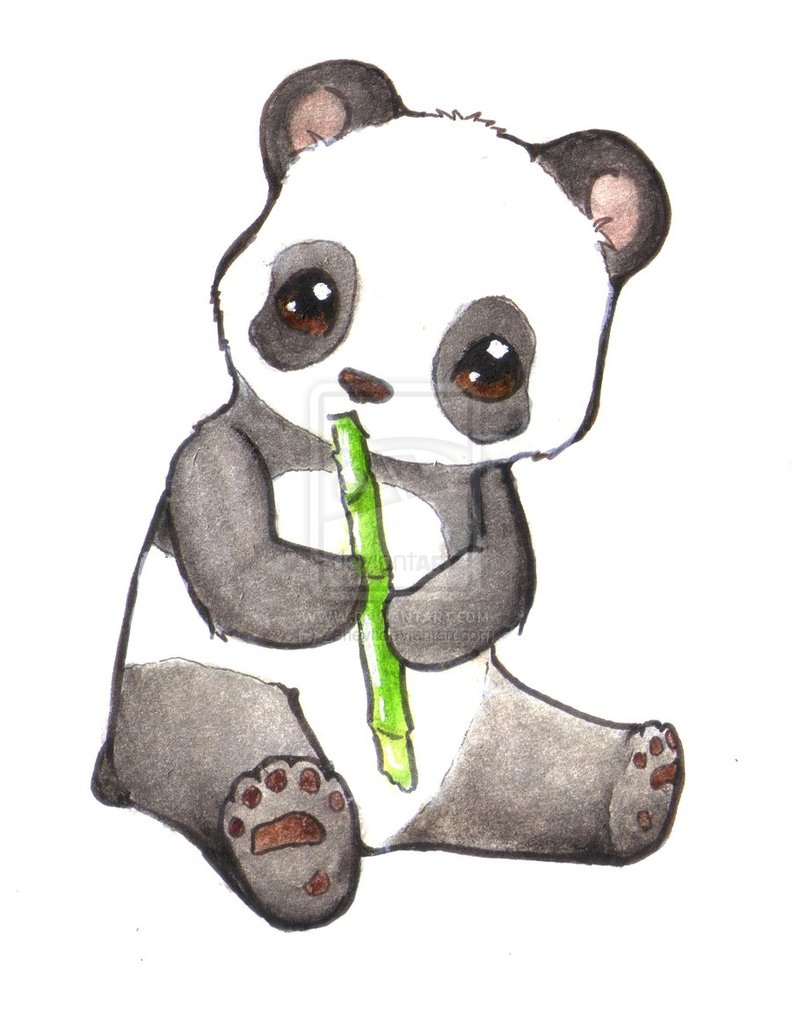 791x1009 Drawing Of A Cute Panda